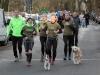 Zieleinlauf mit Hunden